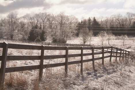 winter_fields_by_mjranum_stock